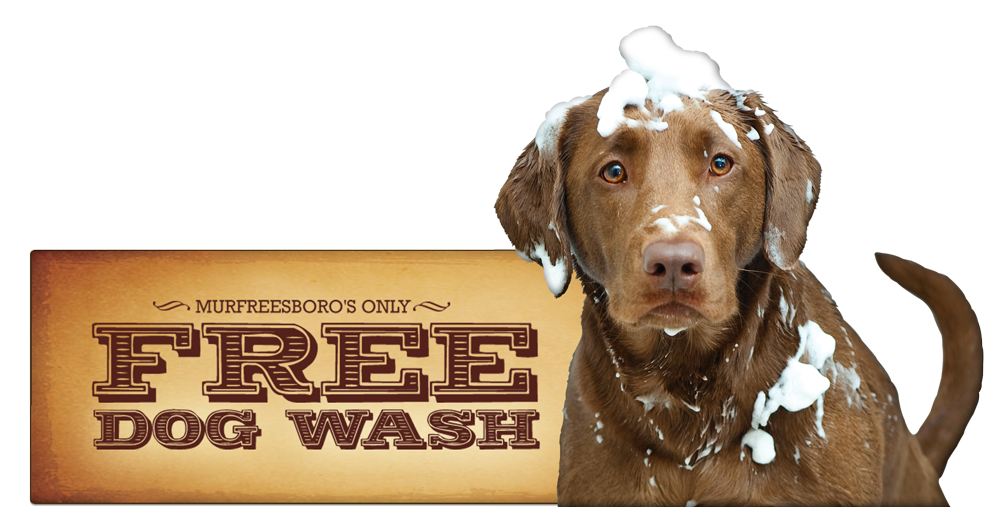 Free Dog Wash Image